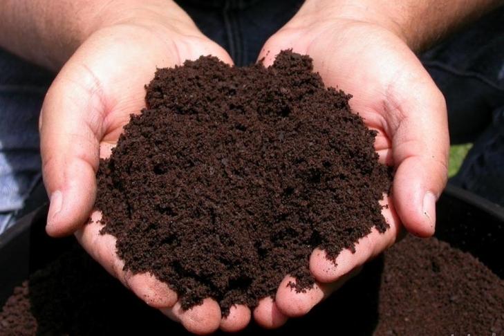 Como Fazer adubo orgânico com restos de alimentos em Casa