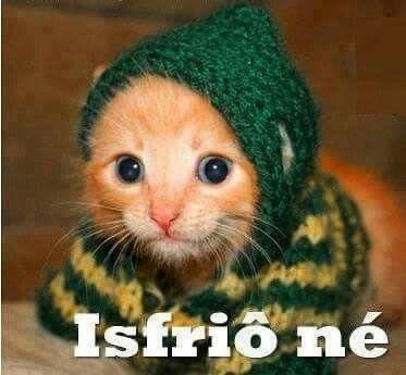 Imagens de frio para Whatsapp